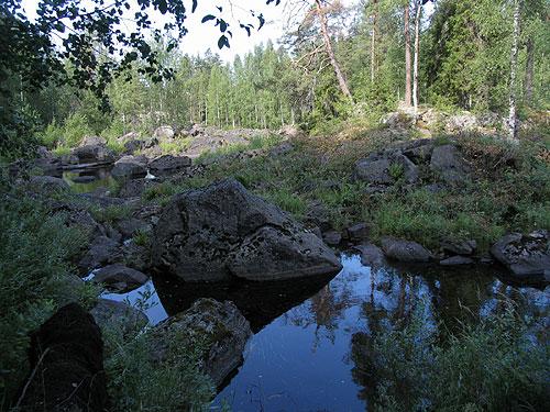 Etela Suomen Metsien Suojelu Metsateollisuus Koitajoki